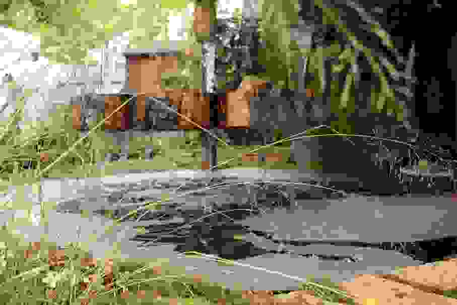 biobernai2014-fontaine