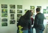Projets et animations en entreprise autour des plantes et de l'écodiversité